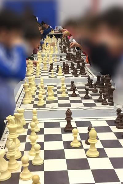 Olympiad 88 Πλαστικό Set Γ   Σκάκι Πιόνια Πλαστικά